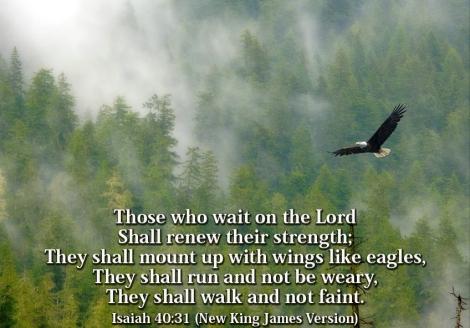 soar like eagles