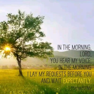 Psalm 5 v 3 in the morning You hear my voice