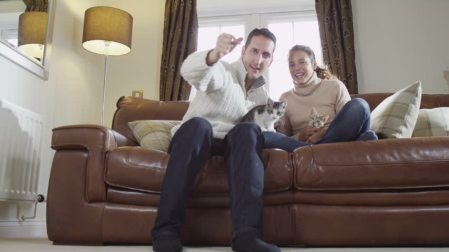 man-and-woman-with-two-kitties-on-sofa